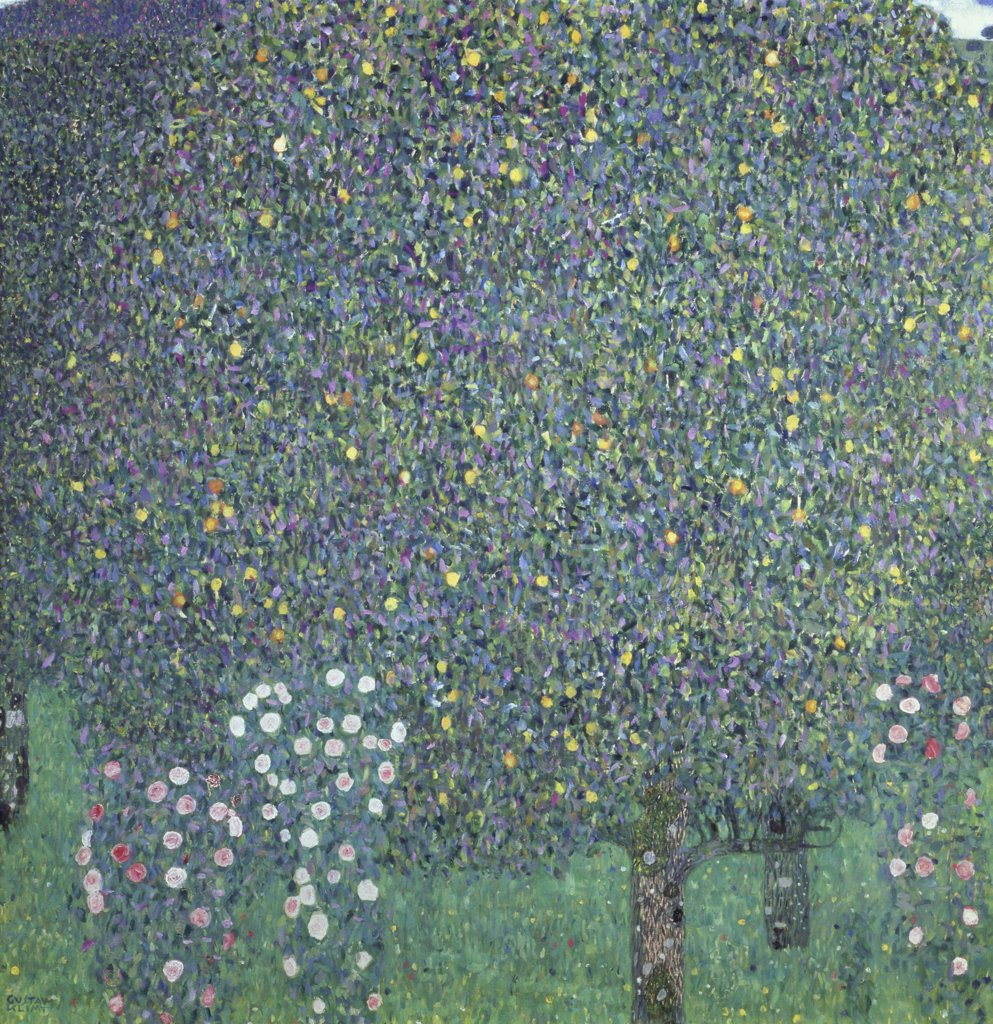 Rose Bushes Under the Trees 