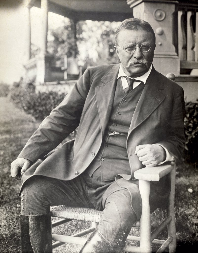 Theodore Roosevelt, (1858-1919), 26th President of the United States : Stock Photo