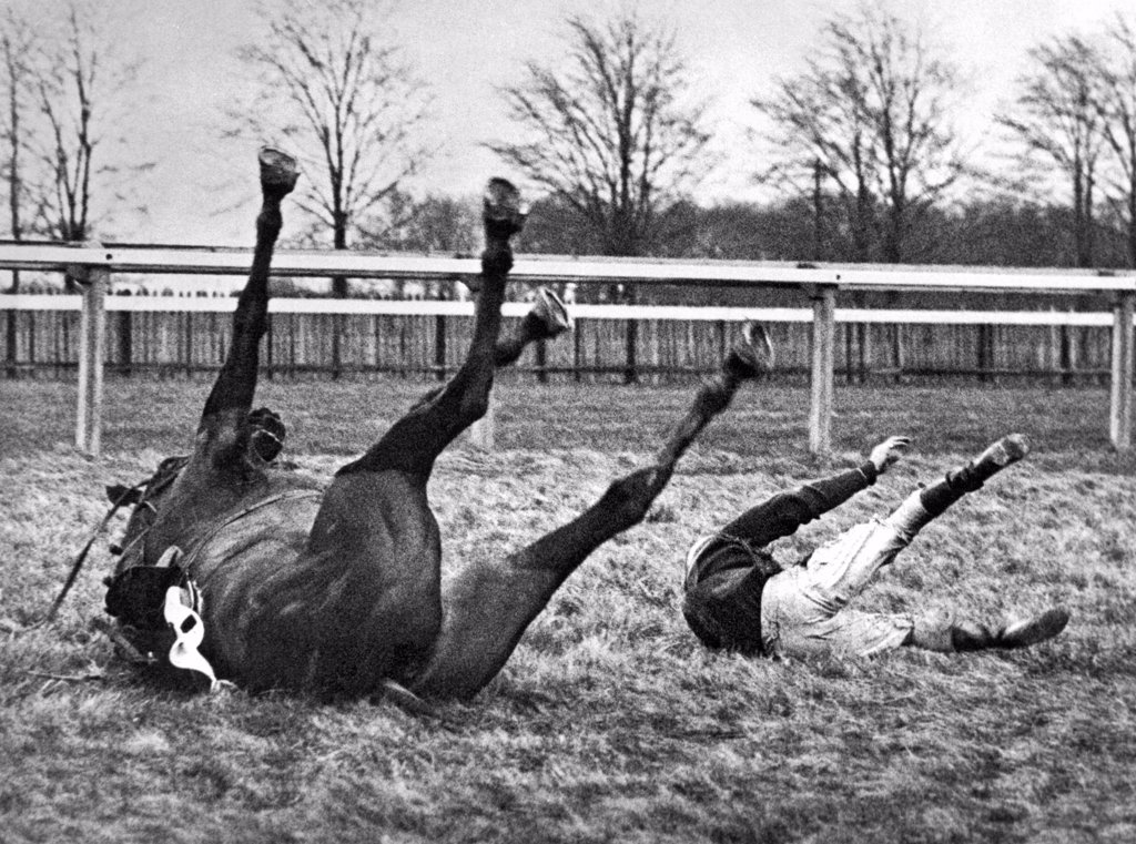 Gatwick, England:  February 13, 1937. Both horse and rider find themselves in similar positions after a spill in the Brook Steeplechase. : Stock Photo