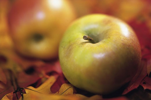 Stock Photo: 1042R-10911 Close-up of apples