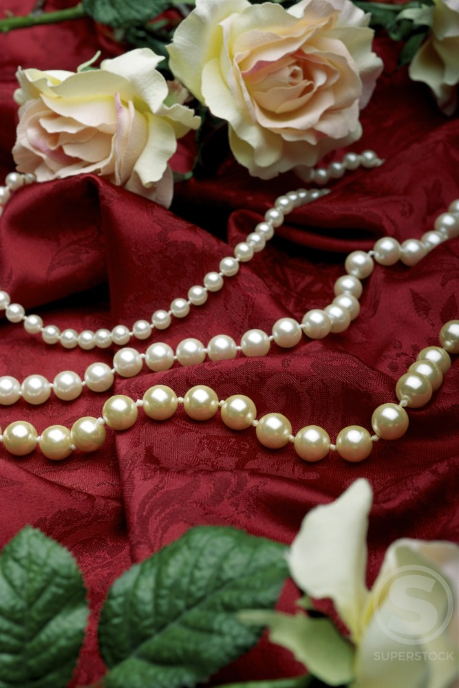 Close-up of a pearl necklace and roses : Stock Photo