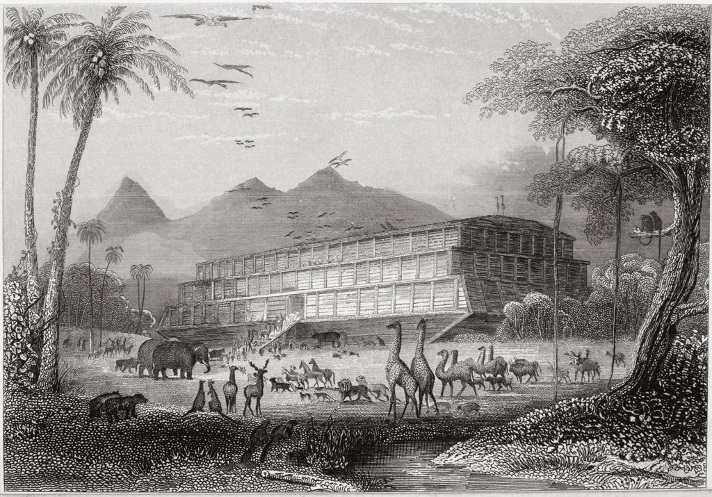 Noah's Ark Steel engraving  : Stock Photo
