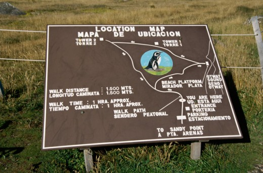 Stock Photo: 105-3156 High angle view of an information board, Seno Otway Penguin Preserve, Chile