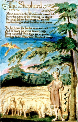 Stock Photo: 1060-503 The Shepherd