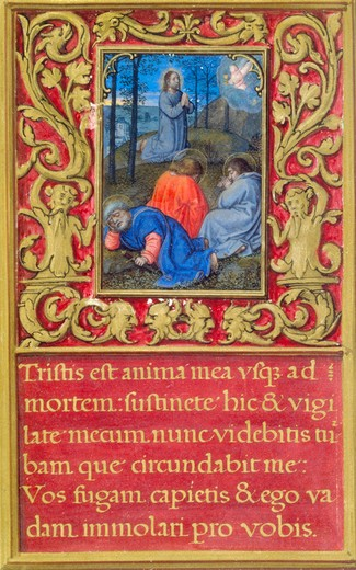 Stock Photo: 1060-645 The Agony in the Garden