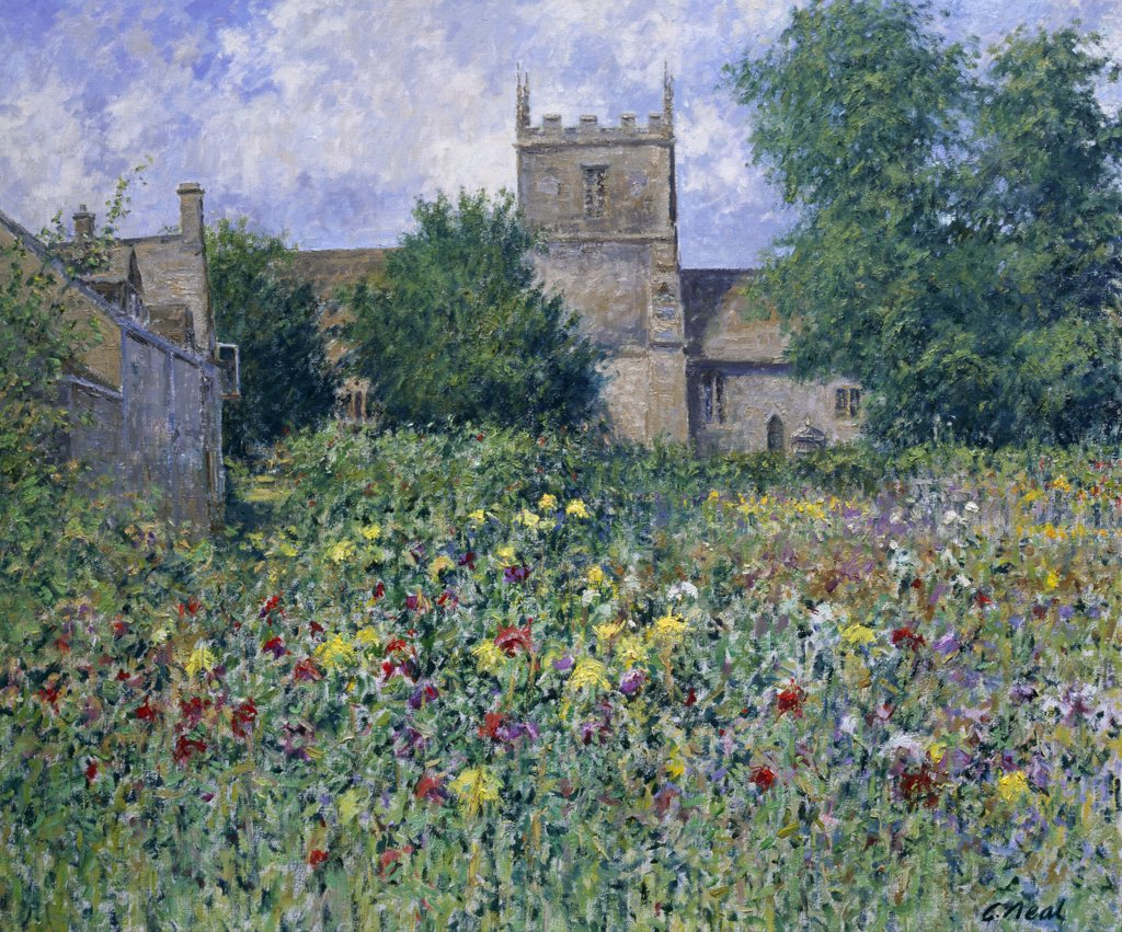 Stock Photo: 1061-18249 Glos,  Allotments at South Cerney (Morning,  August) by Charles Neal,  oil on canvas,  2002,  (b.1951)