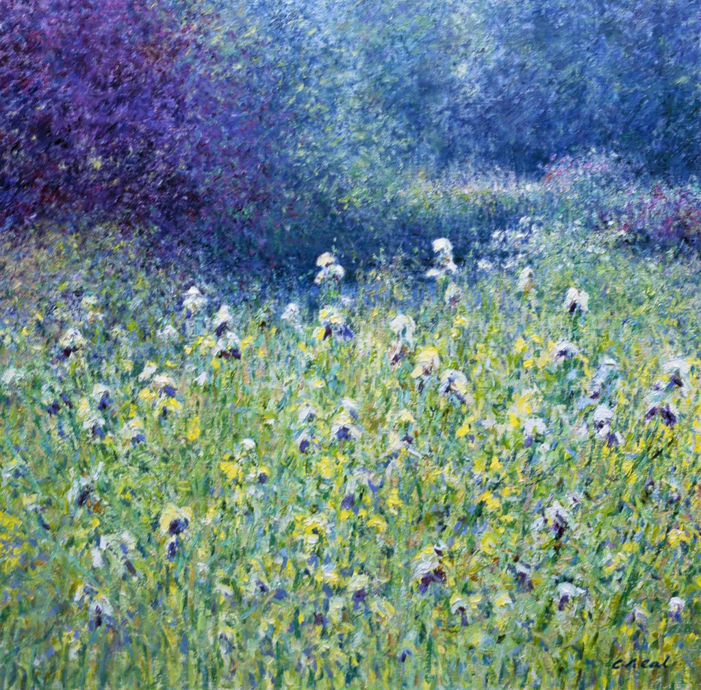 Stock Photo: 1061-18363 Composition With Mixed Irises, Byfleet Manor, Surrey. Early Morning, June. Charles Neal (b.1951 British) Oil On Canvas