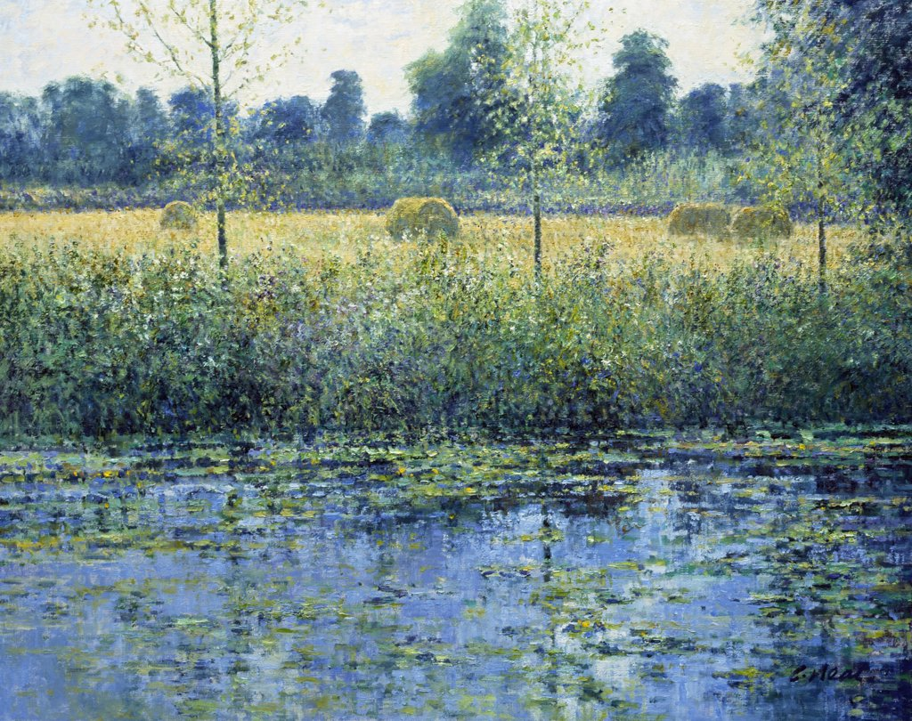 Summer Meadows By The River Rouvre, Cramenil, Normandie, France. Afternoon, July.