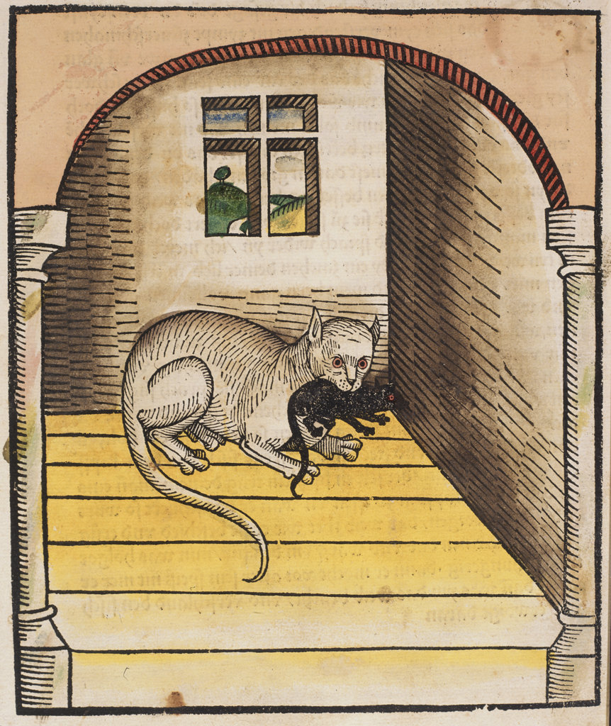 Stock Photo: 1095-1176 Cat with a Mouse in His Mouth