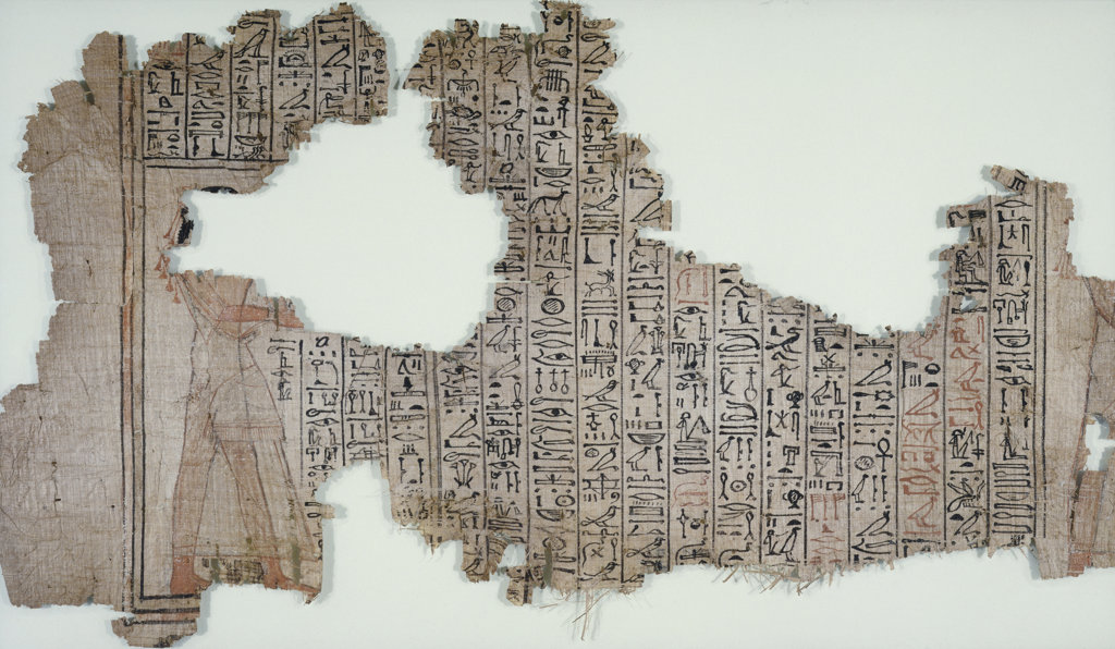 Stock Photo: 1095-136 Papyrus