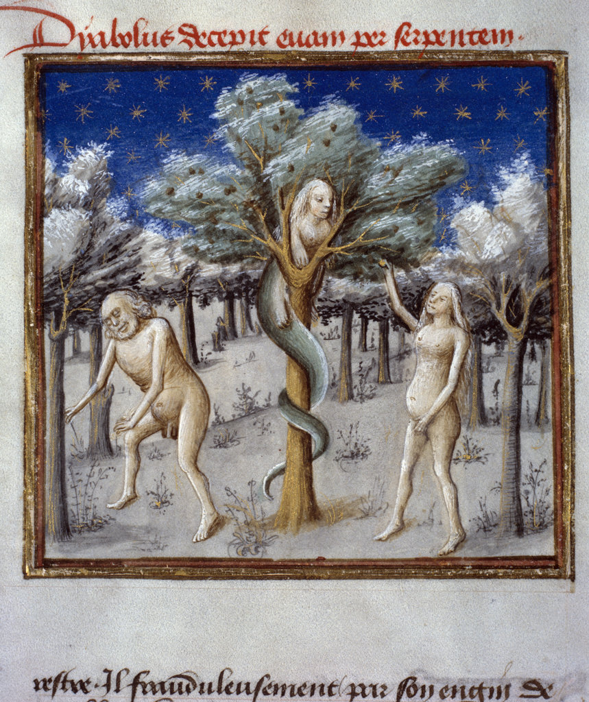 Adam and Eve with the Serpent from Speculum Humanae Salvationis by Ludolf of Saxony,  1455,  15th century,  USA,  Chicago,  Newberry Library : Stock Photo