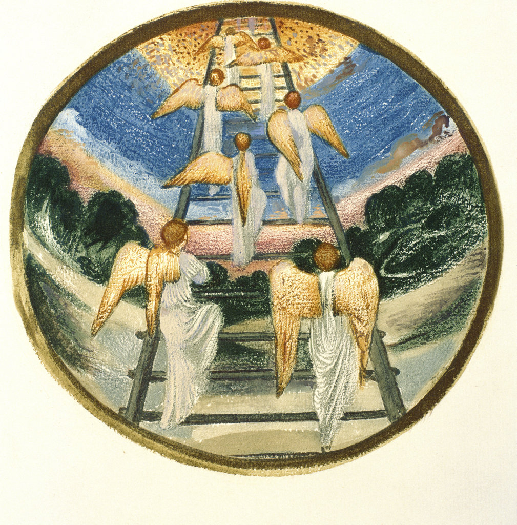"Jacob's Ladder (Illustration from ""The Flower Book"")