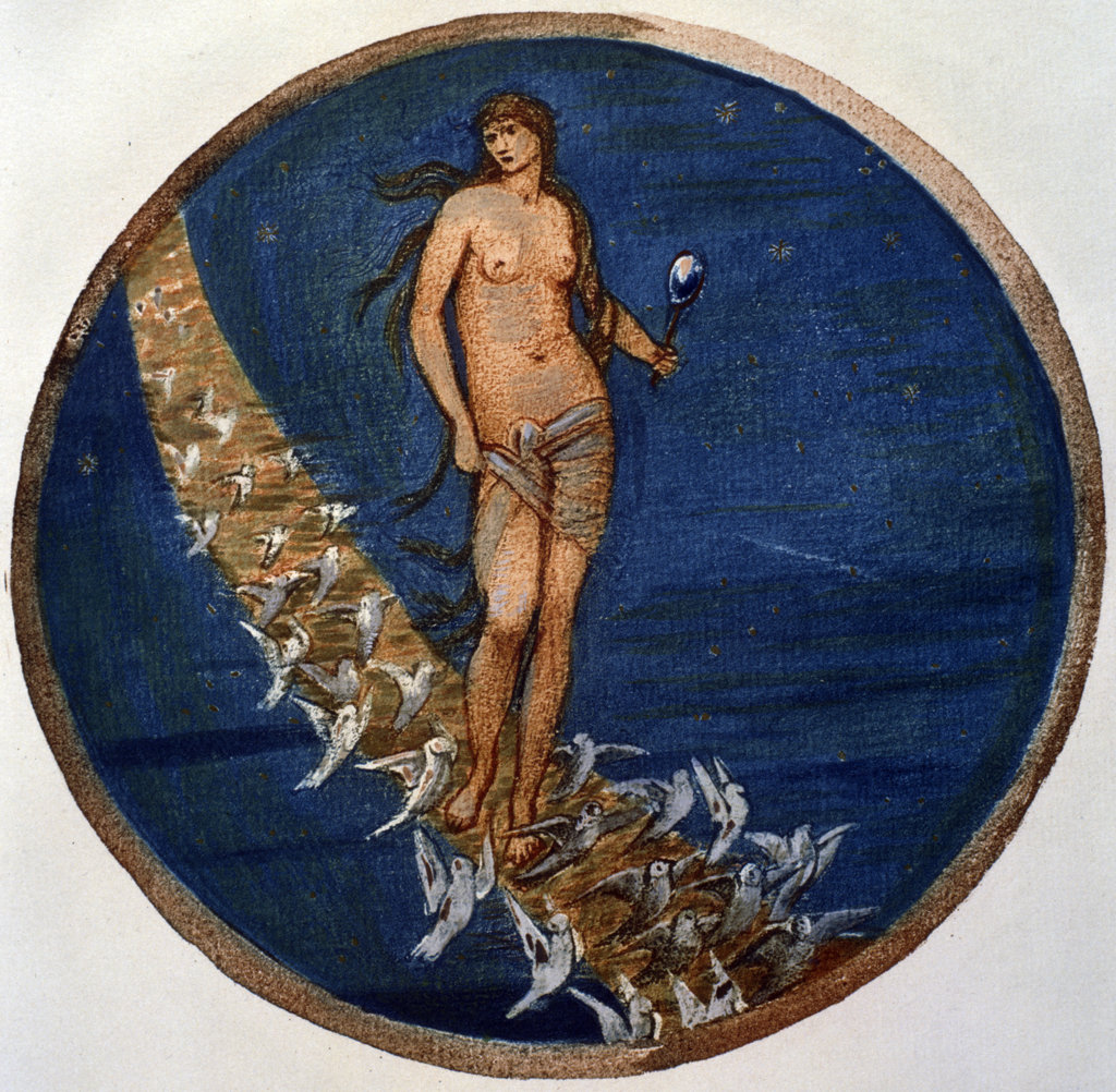 Stock Photo: 1095-289 Rose of Heaven,  Venus and her Doves Amongst The Stars,  from The Flower Book,  by Edward Burne-Jones,  (1833-1898),  USA,  Illinois,  Chicago,  Newberry Library