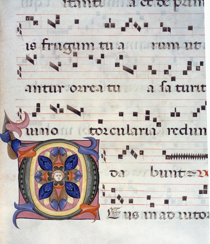 Gradual Illumination manuscript,  USA,  Illinois,  Chicago,  Newberry Library : Stock Photo