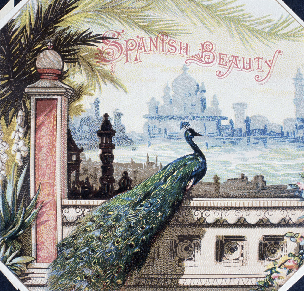 Stock Photo: 1095-609 Spanish Beauty,  Cigar box labels,  19th Century