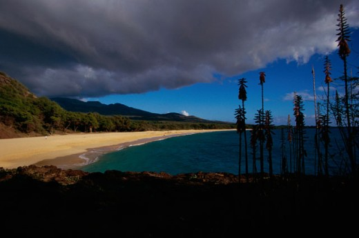 Stock Photo: 1096-288 Makena Beach State Park