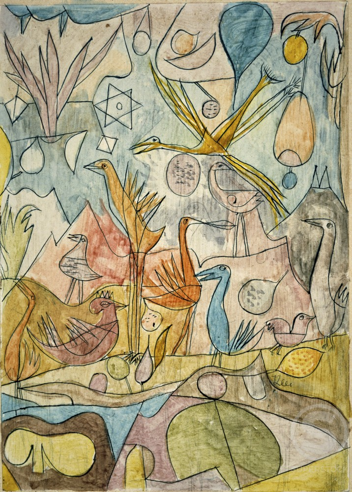 Stock Photo: 1100-397 Collection of Birds 