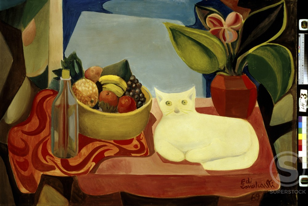 Still Life with White Cat 