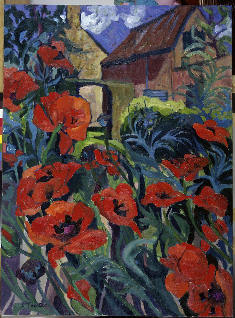 Poppies  Josephine Trotter (b.1940/British) : Stock Photo