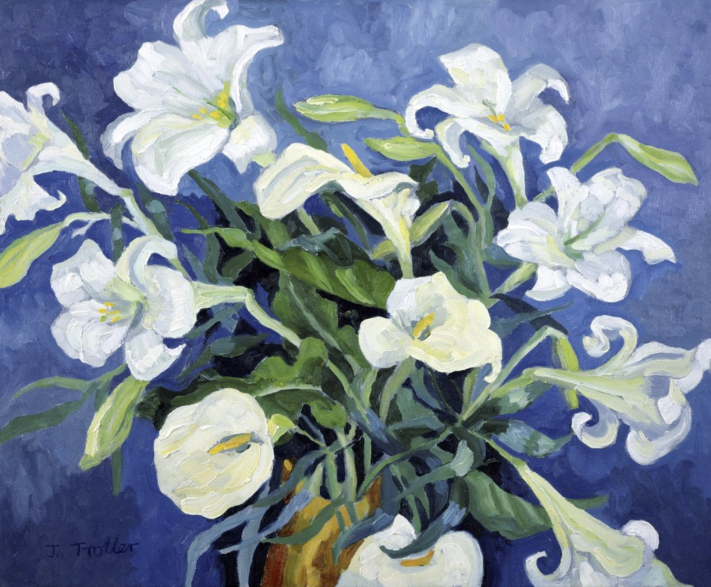 Stock Photo: 1101-515 White Lilies