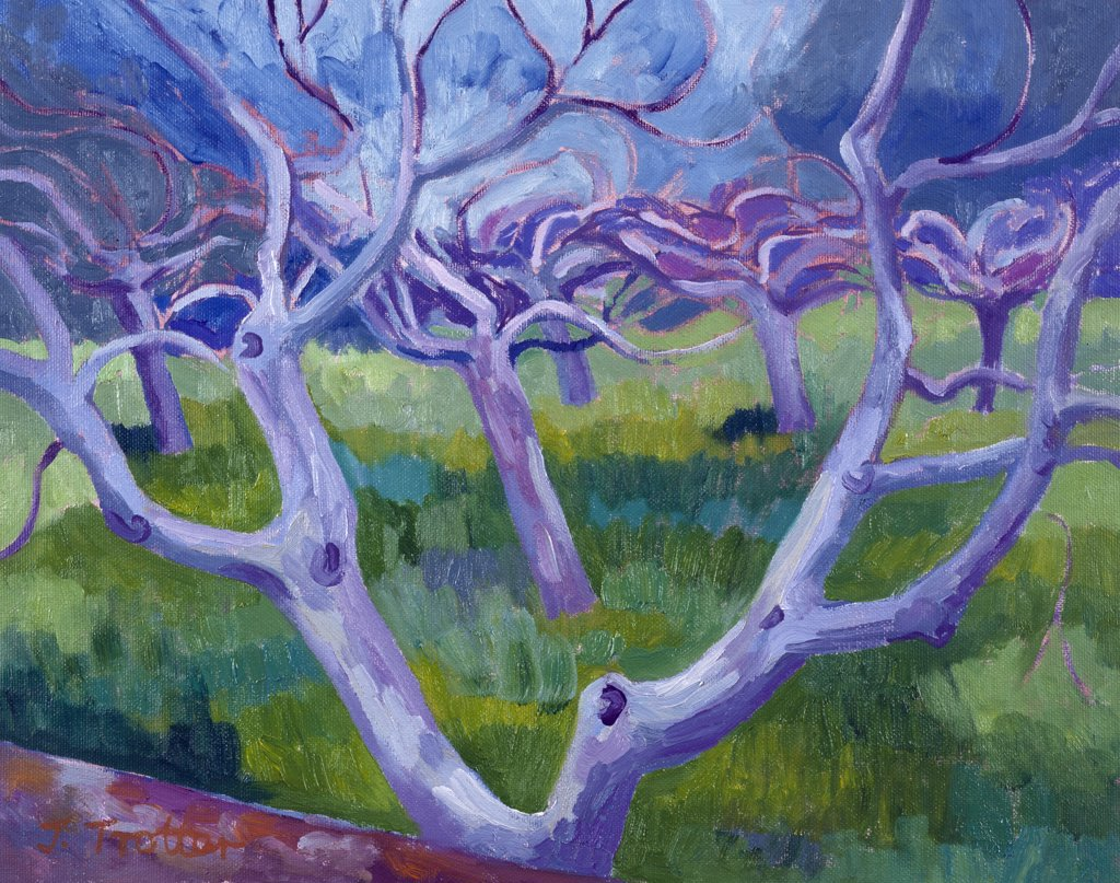 Stock Photo: 1101-533 Fig Trees by Josephine Trotter,  1997,  born in 1940