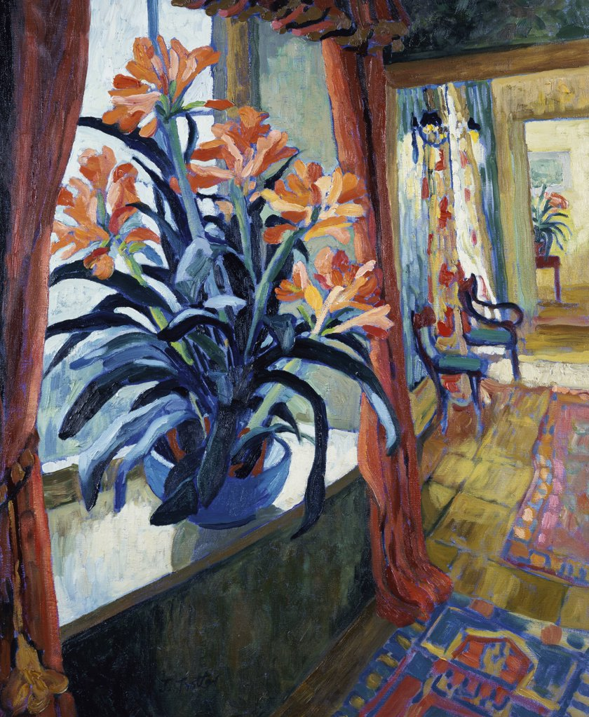Stock Photo: 1101-535 Interior with Clivia 