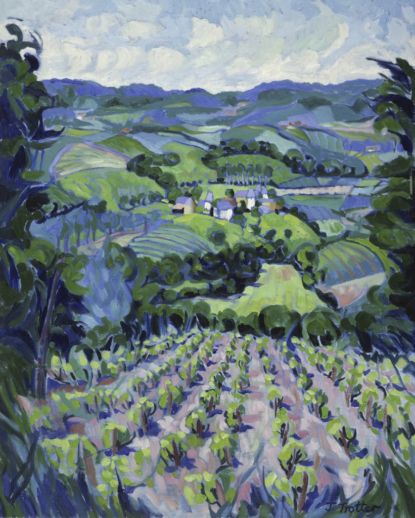 Stock Photo: 1101-566 Vineyard In the Lot