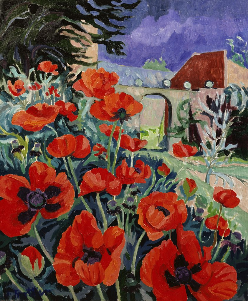 Stock Photo: 1101-575 Poppies, Nill Farm