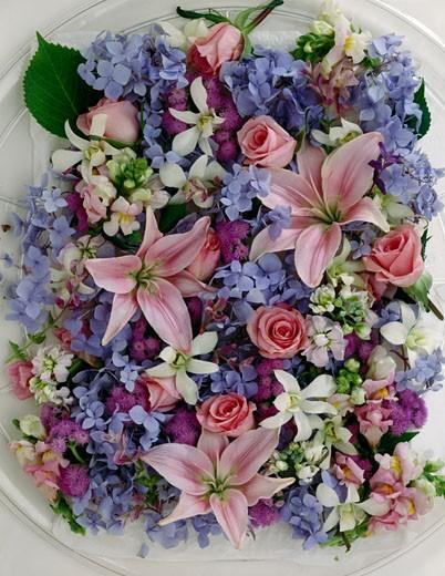 Flower still life : Stock Photo
