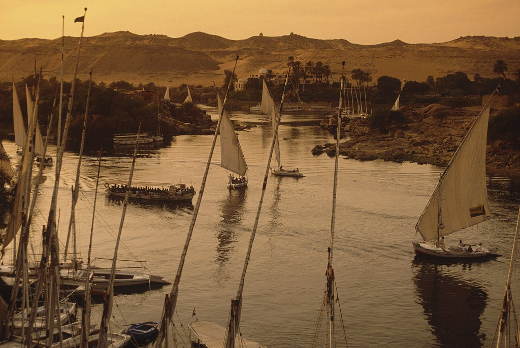 Stock Photo: 1119-1632 High angle view of felucca boats in the river, Nile River, Aswan, Egypt
