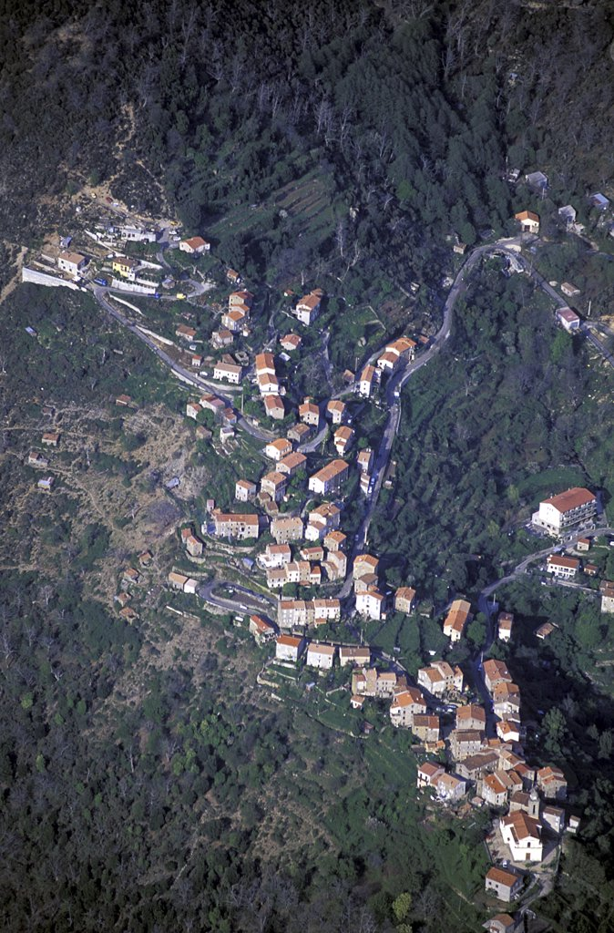 Aerial view of a town, Corsica, France : Stock Photo