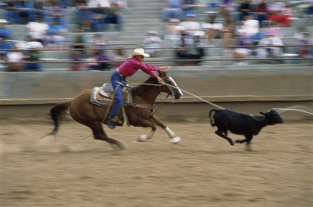 Window Rock Arizona USA : Stock Photo