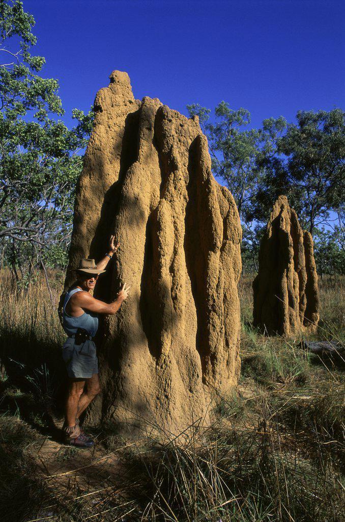 Stock Photo: 1119-249 Kakadu National Park  Northern Territory  Australia