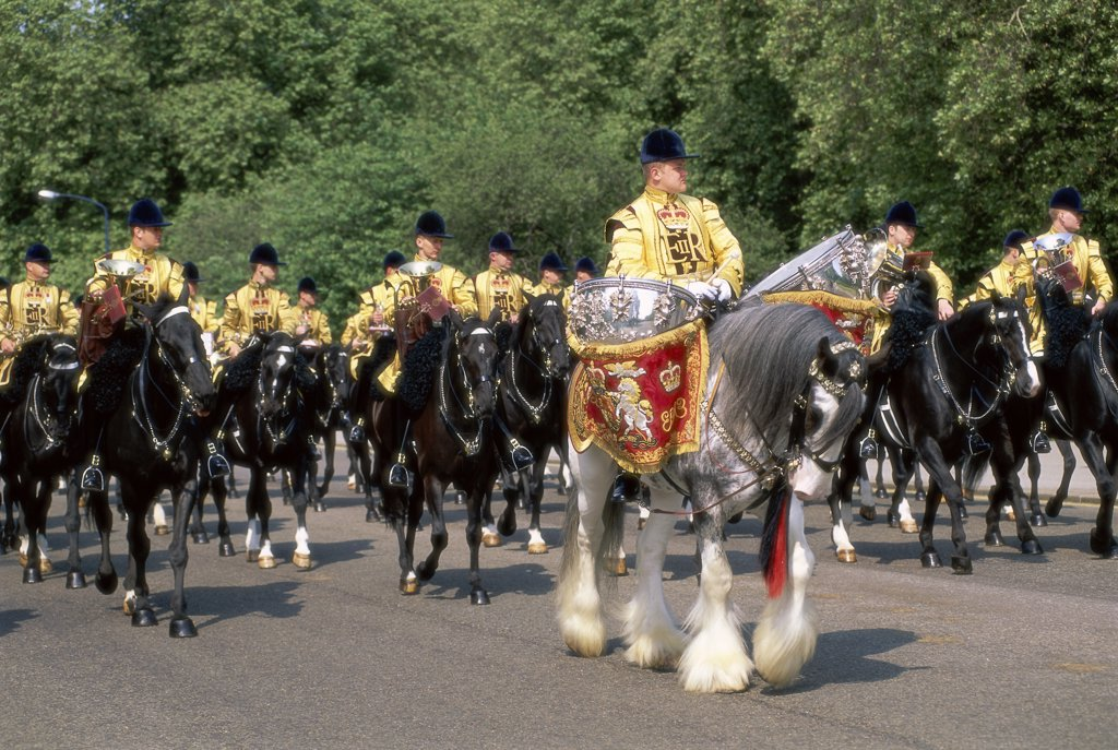 Stock Photo: 1119-284 Trooping the Colour