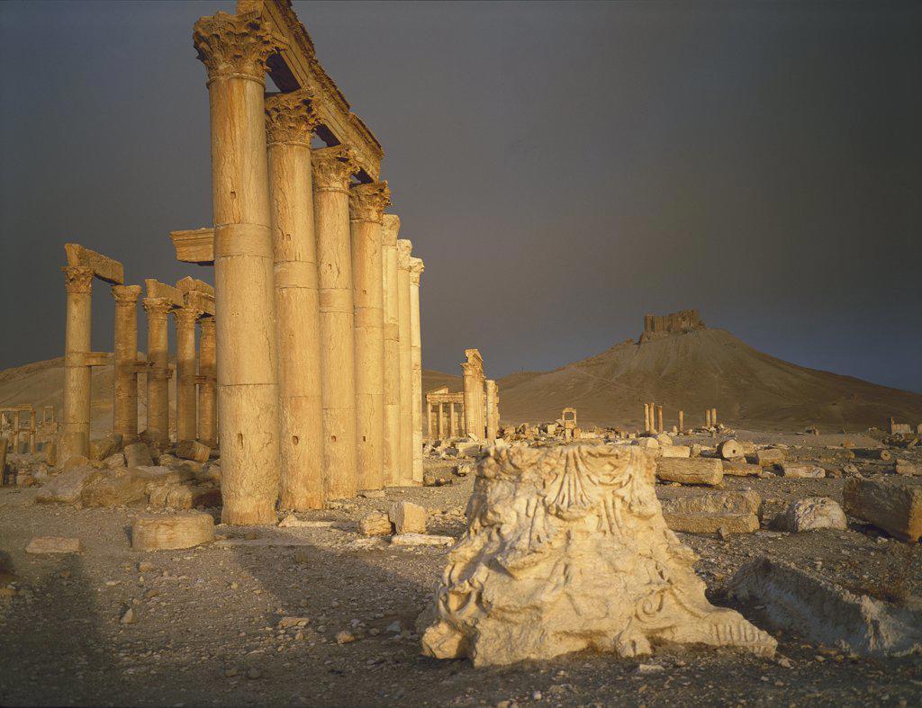 Palmyra Syria : Stock Photo
