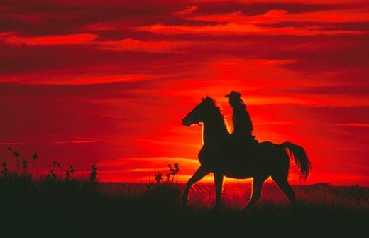 Stock Photo: 112-10021 Silhouette of a man riding a horse, Colorado, USA