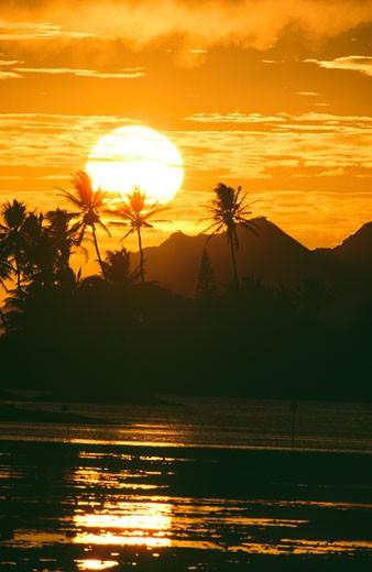 Stock Photo: 112-1131 Diamond Head Oahu Hawaii USA