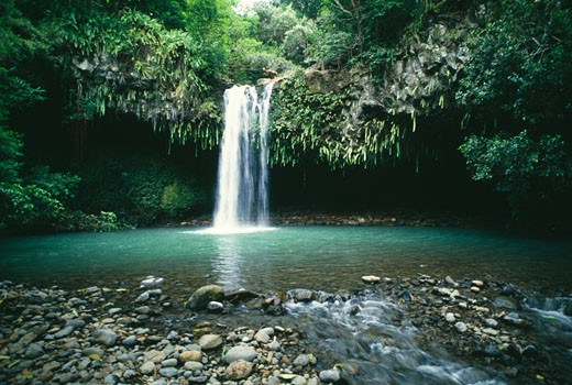 Waterfall in a forest, Twin Falls, Maui, Hawaii, USA : Stock Photo