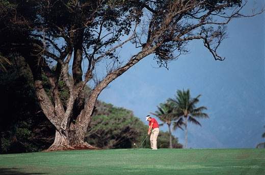 Jim Bendon, Maui Country Club, Sprecklesville, Maui, Hawaii, USA : Stock Photo