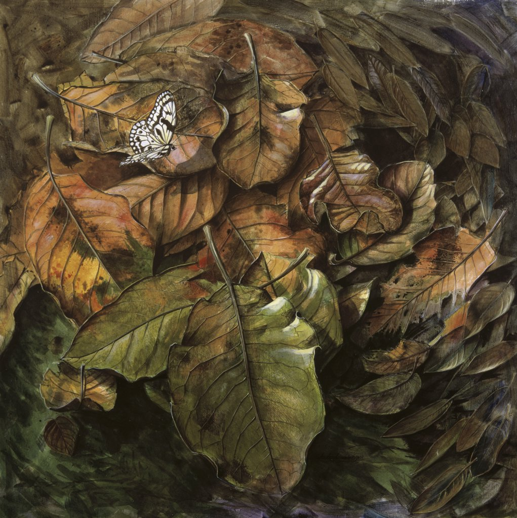 Stock Photo: 1134-604 A Tumble of Leaves, Cornwall
