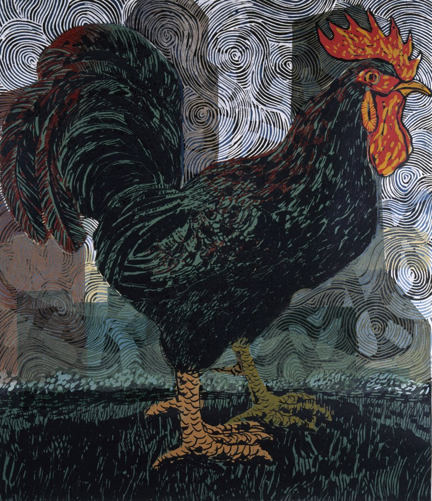 Black Rooster by Barry Wilson, (born 1929) : Stock Photo