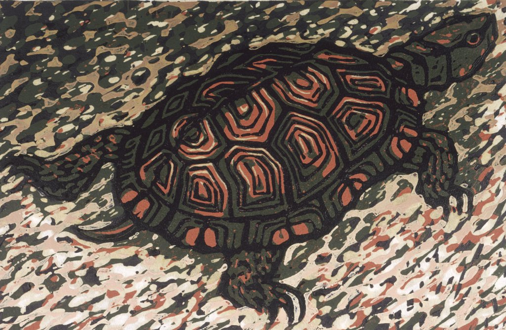 Moving Turtle by Barry Wilson, woodcut print, (born 1929) : Stock Photo