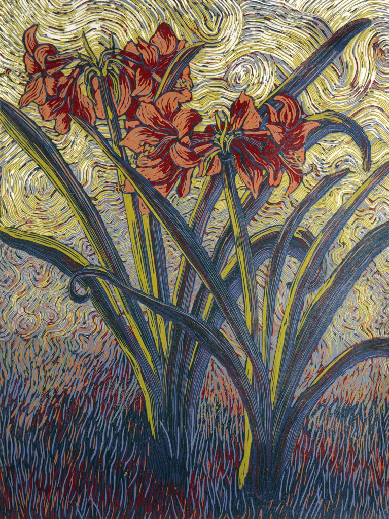 Amaryllis by Barry Wilson, woodcut print, born in 1961 : Stock Photo