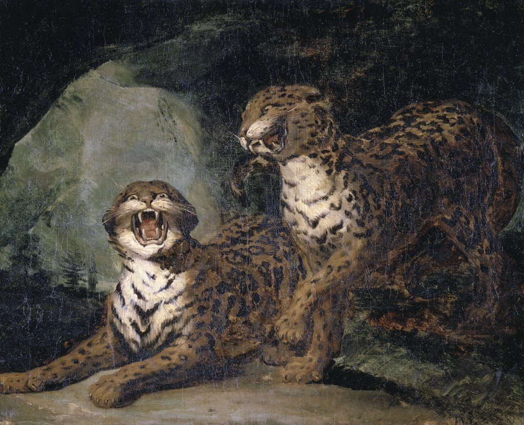 Deux Leopards Two Leopards 1817-20 Theodore Gericault (1791-1824 French) Musee des Beaux-Arts, Rouen, France : Stock Photo