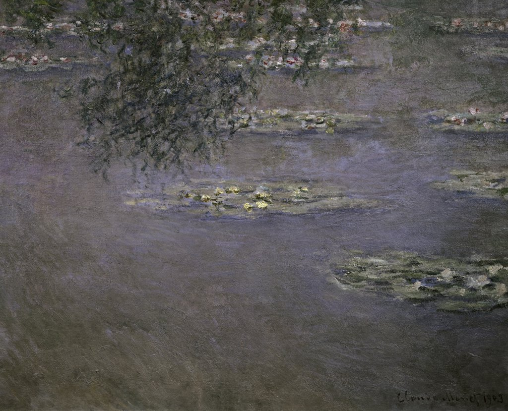Stock Photo: 1158-1228 Nympheas