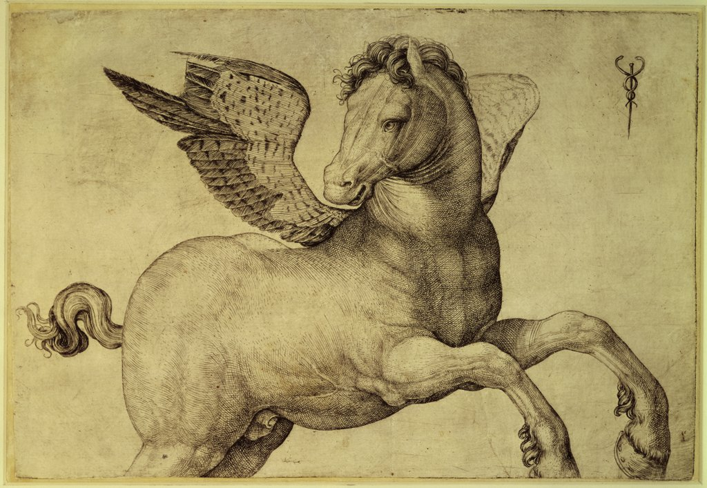 Stock Photo: 1158-2235 Pegasus  Late 15th C.  Jacopo de' Barbari (1440-1511/Italian)  Engraving Rijksmuseum, Amsterdam