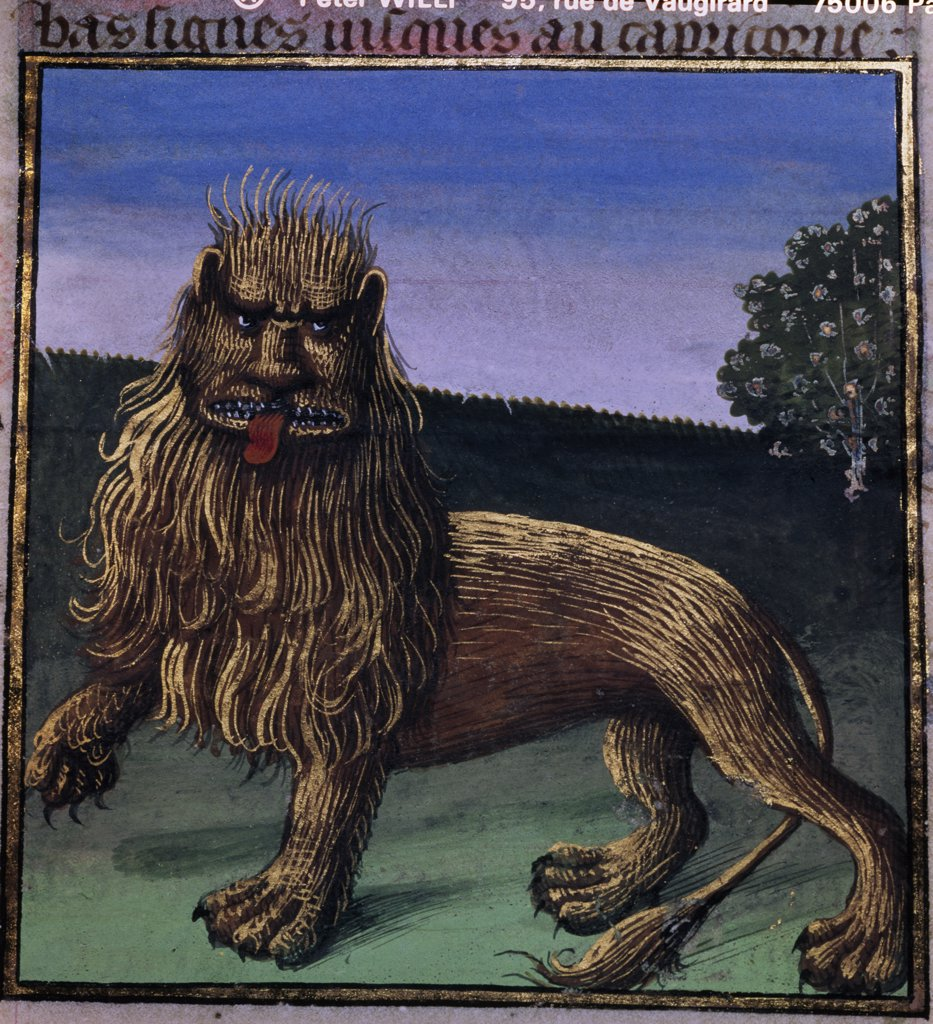 The Lion, manuscript, France, Paris, Bibliotheque Nationale : Stock Photo