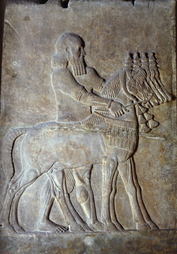 Man on Foot Driving Four Horses, Mesopotamian Art : Stock Photo