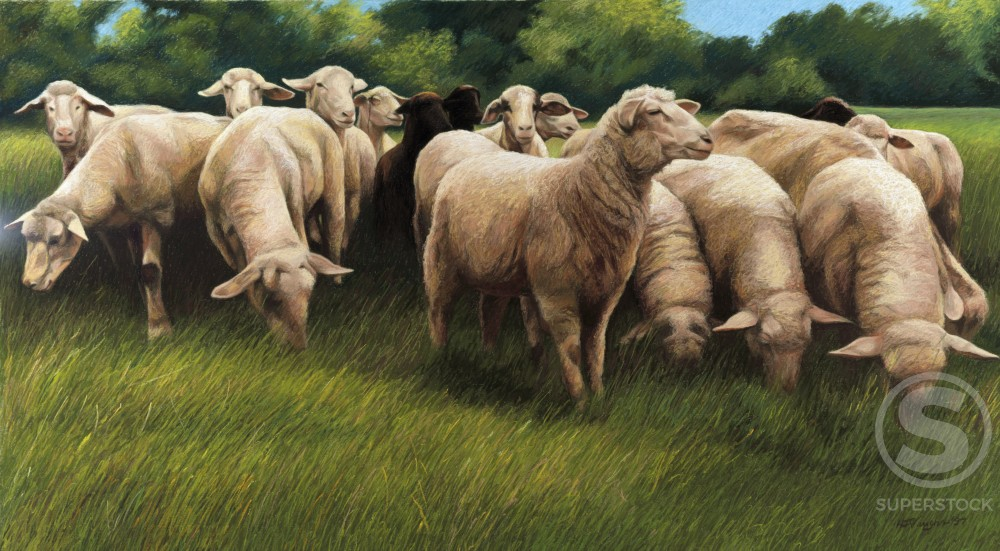Stock Photo: 1162-76563 All the Sheep Came to the Party by Helen J. Vaughn, pastel on board, 1997, 20th century, private collection
