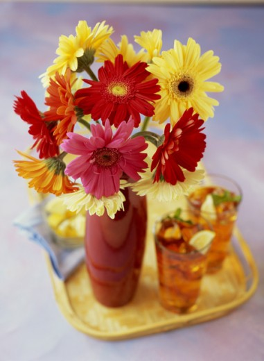 Two glasses of ice tea with a vase on a tray : Stock Photo